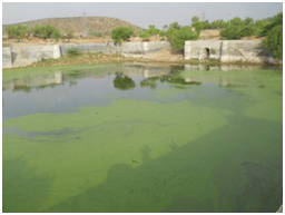 Dohini kund UP